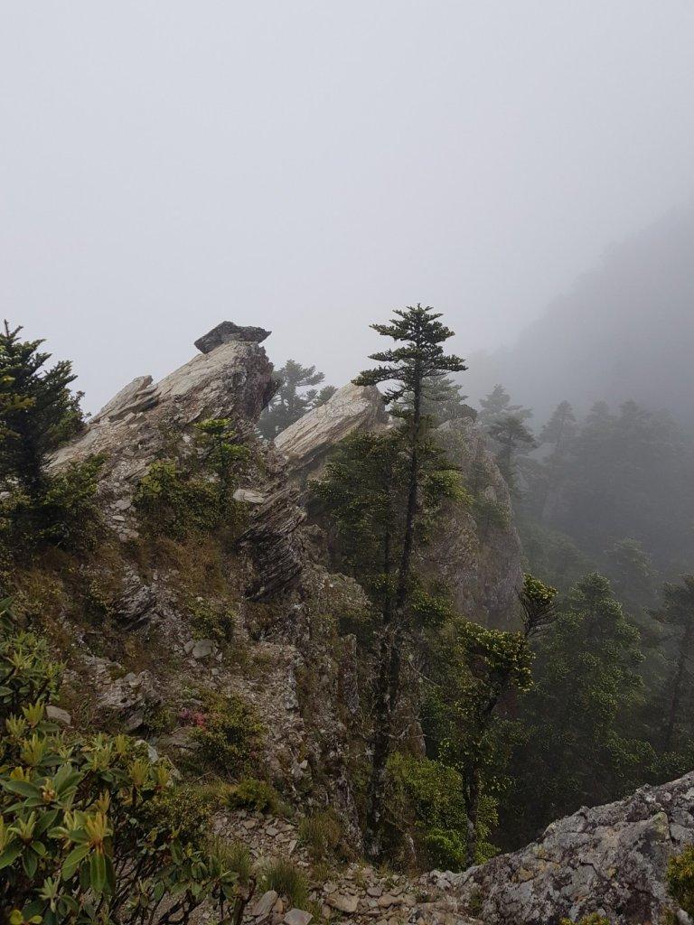 畢羊縱走(百岳×9、10)_1000569