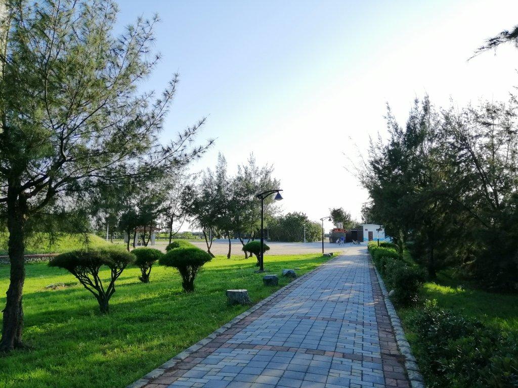 台中大安~風車轉轉~龜殼生態公園景觀步道_1014940