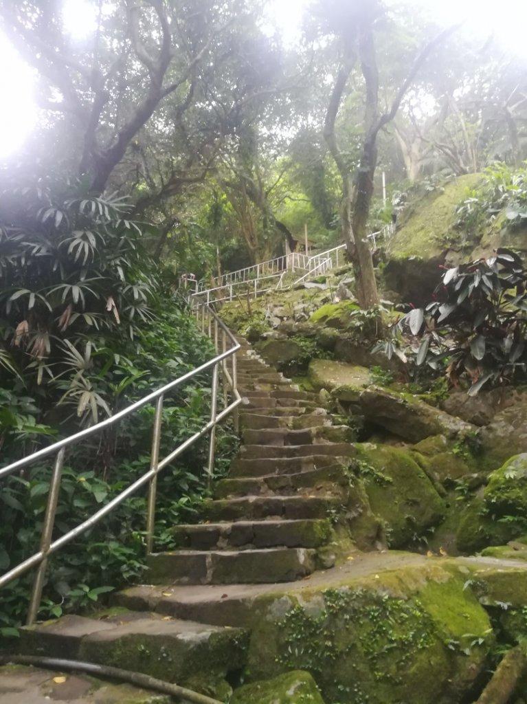 小百岳013號~南港山,幾乎整路爬樓梯,不怕樓梯者限定_1348533