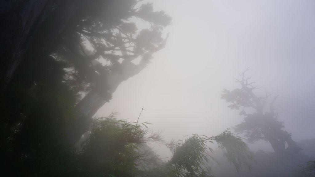 1061028~30 再訪北大武山_197164