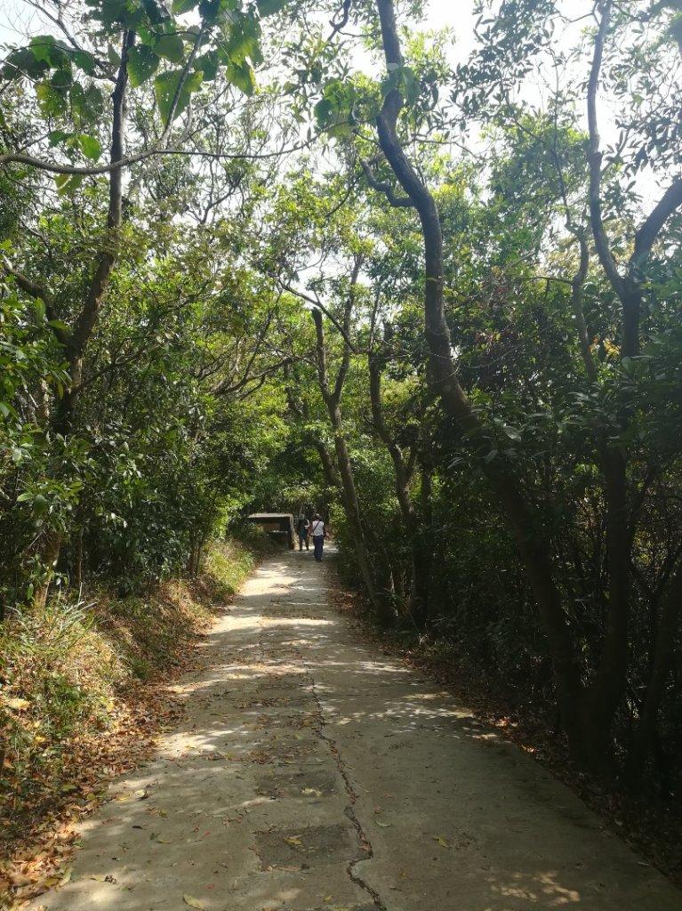劍潭山小散步·見識沙塵暴下的台北市_1356897