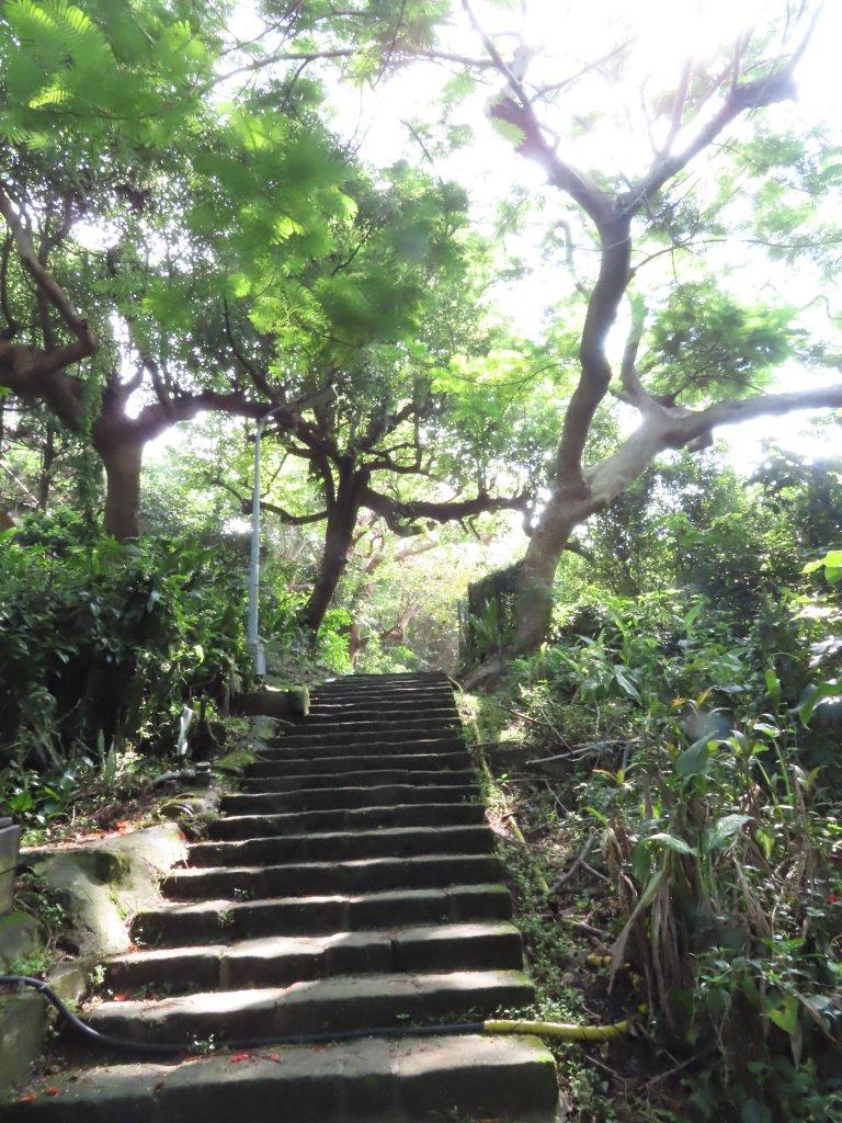 夏季清涼步道:翠峰瀑布與步道_619537