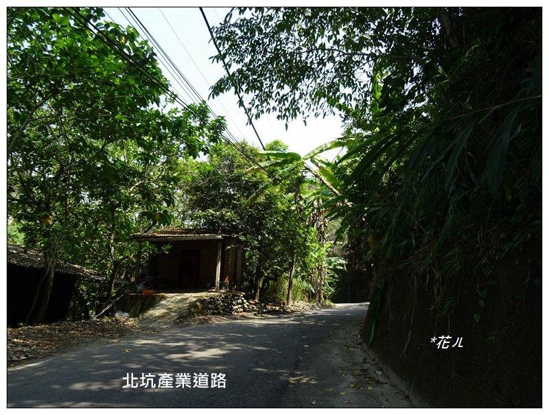 霧峰/桐林花廊步道_924303