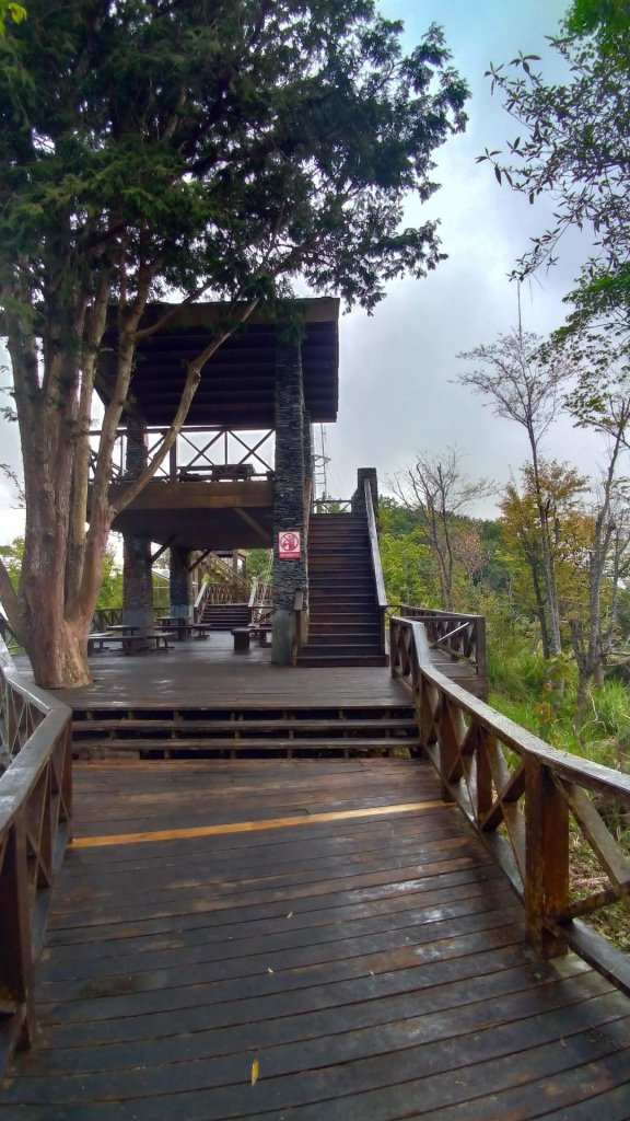 藤枝國家森林遊樂區_558796