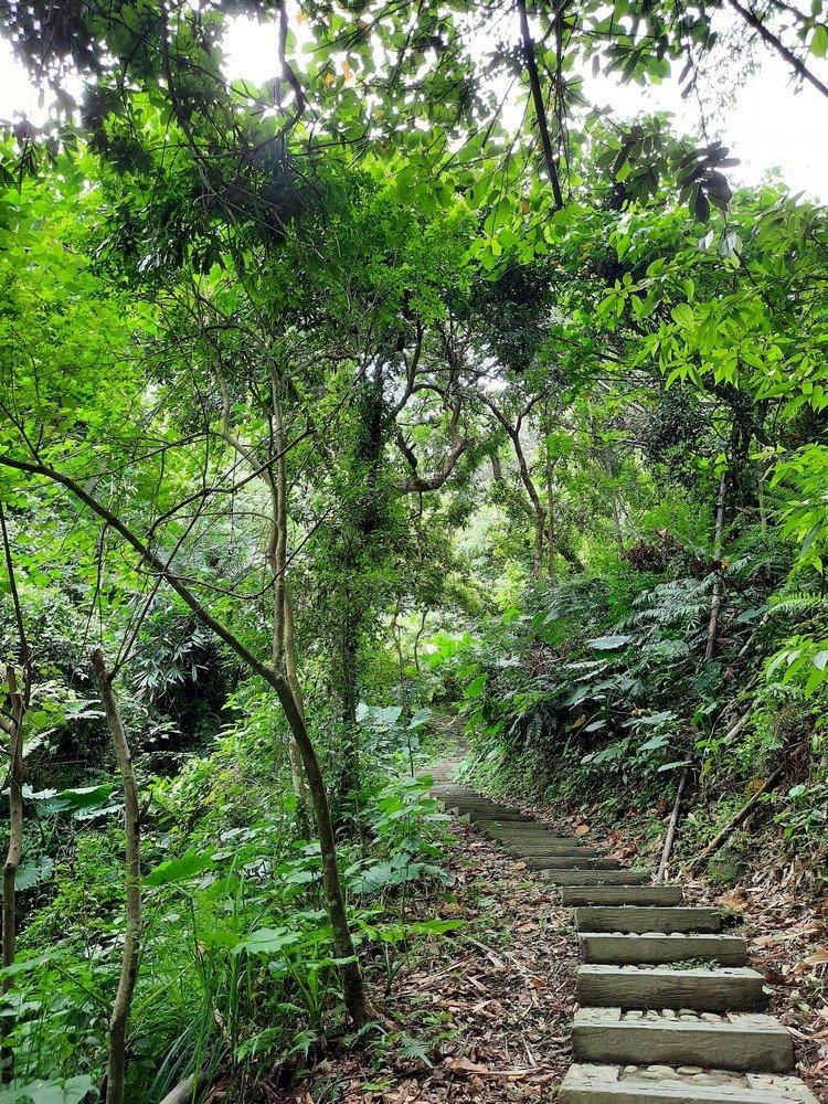 《雲林》林內龍過脈步道20200913_1098524