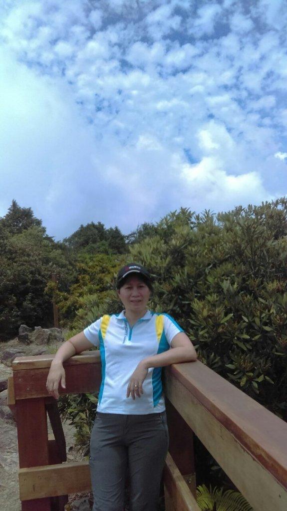 觀霧(榛山,檜山,野馬瞰山,觀霧瀑布)_636088