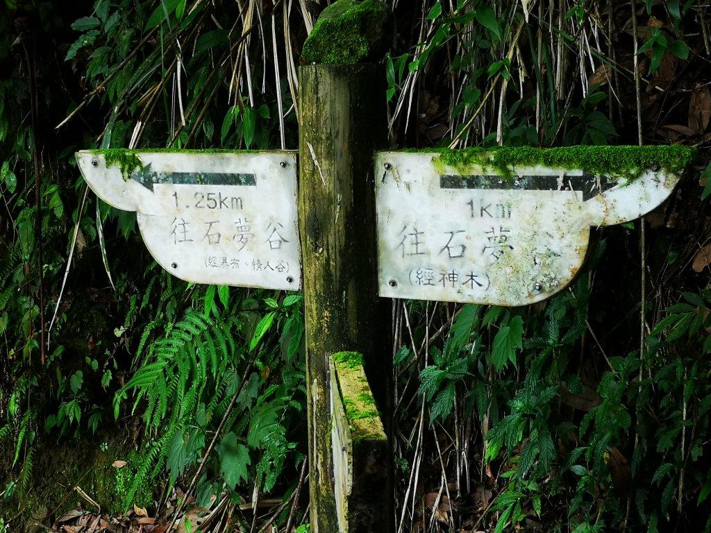 石夢谷散步_631641