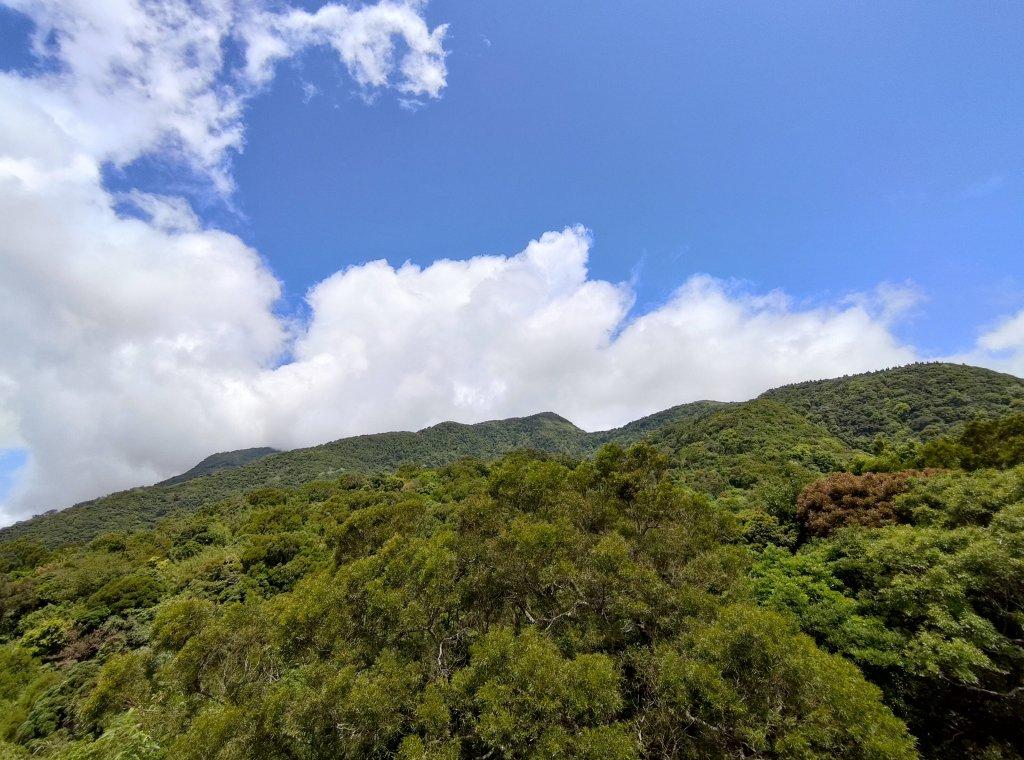 中正山步道-竹子湖來回_1361647