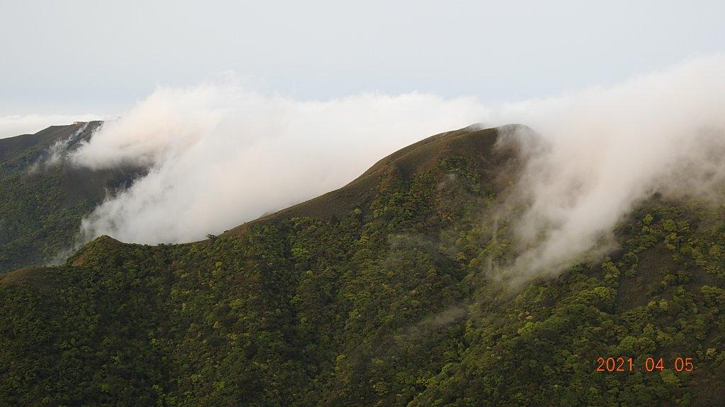 0405陽明山再見雲瀑,今年以來最滿意的一次_1335477