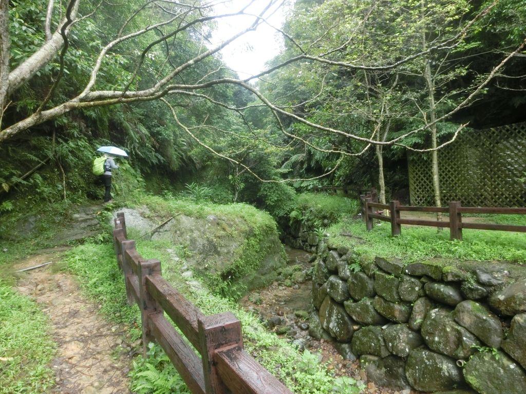 豹山溪步道.獅山.象山.和興炭坑_199004