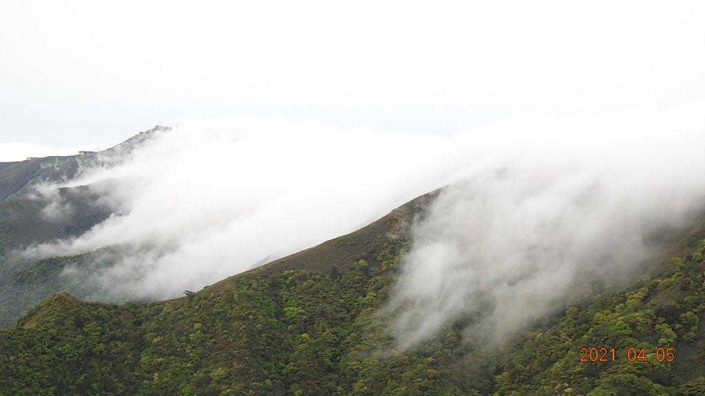 0405陽明山再見雲瀑,今年以來最滿意的一次_1335525