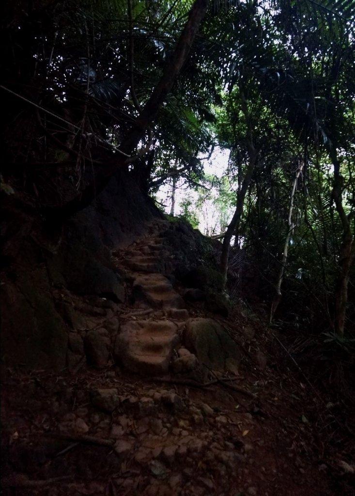 獅頭山+猿山 O型_1310413