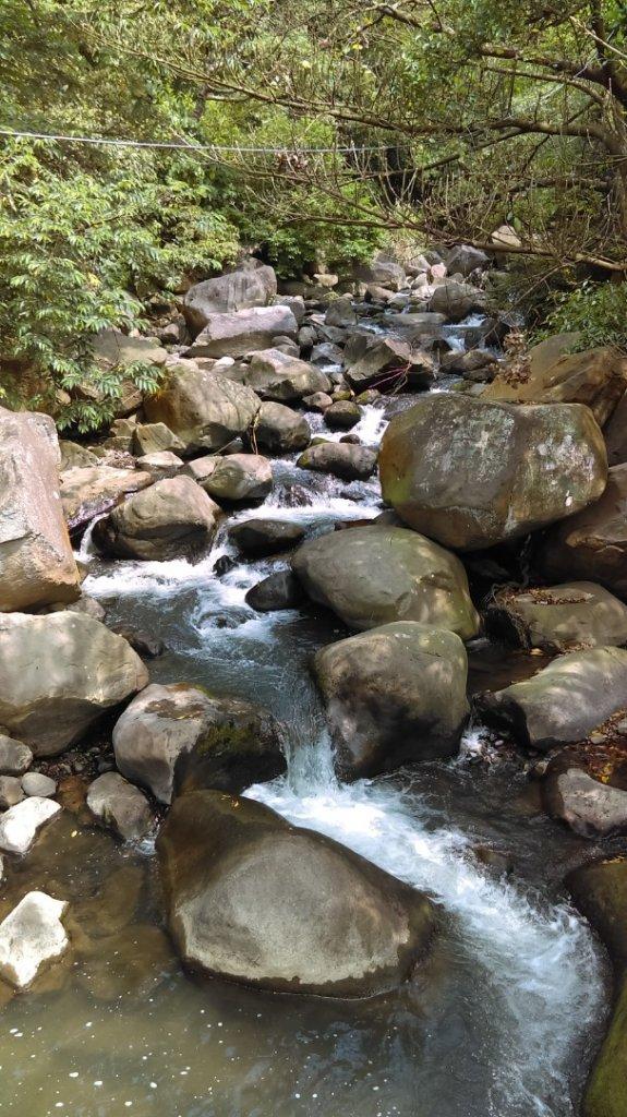 溪水潺涓的半嶺水圳步道、硫氣氤氳的龍鳳谷_890883