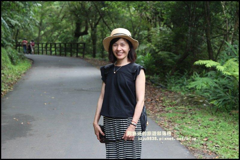 烏來內洞國家森林遊樂區觀瀑步道_618543