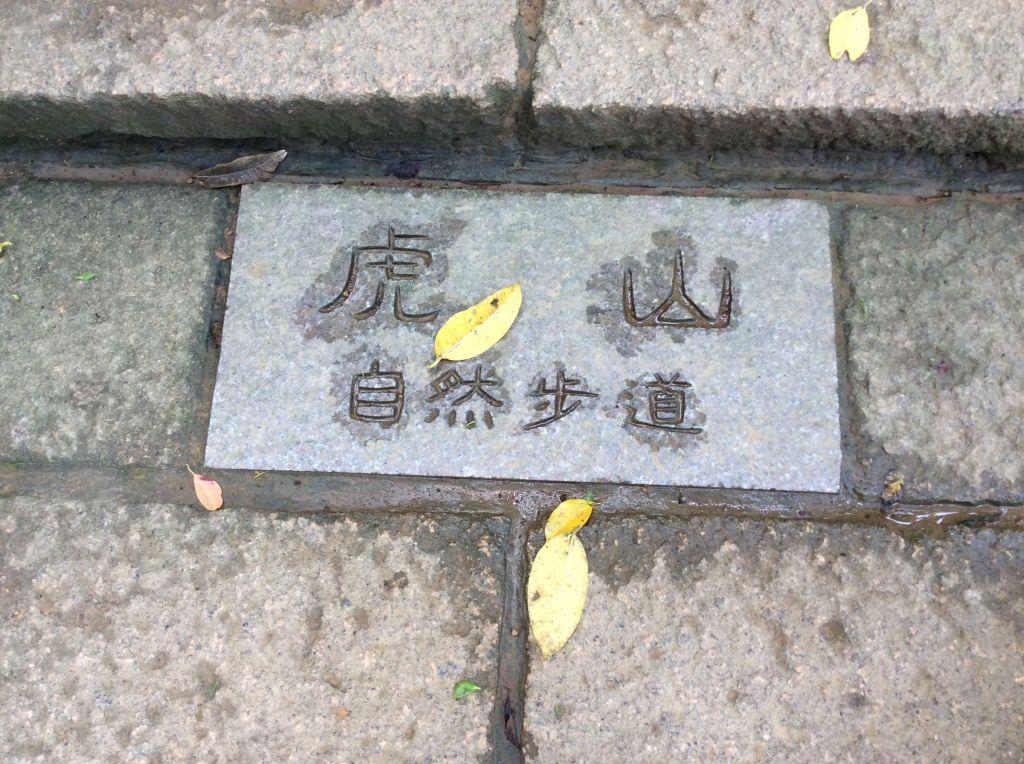 虎山>九五峰>象山親山步道_173041