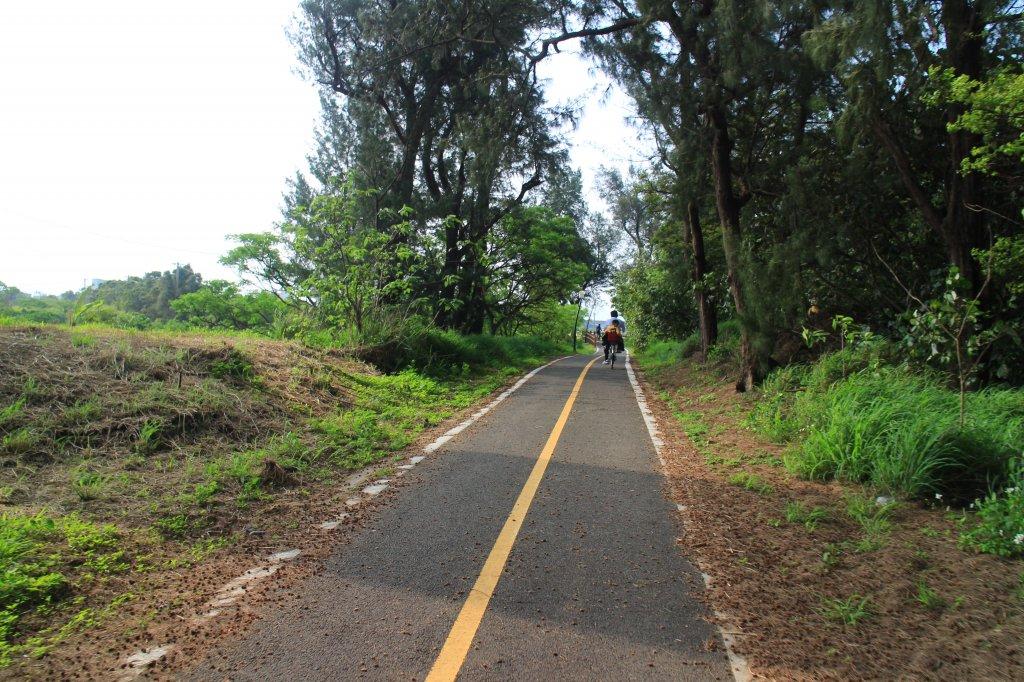 崎頂自行車騎 20190331_569524
