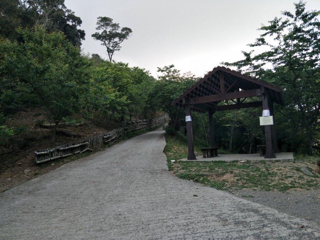 小百岳:藤枝山_1323141