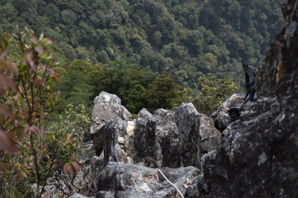 平石山2021.3.28_1325921
