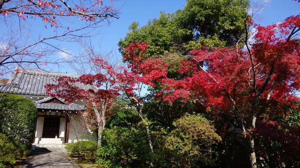日本京都嵐山_651976