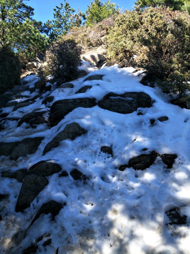 百岳:合歡北峰-雪季後_1243495