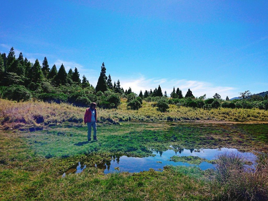 加羅湖--201902_531047