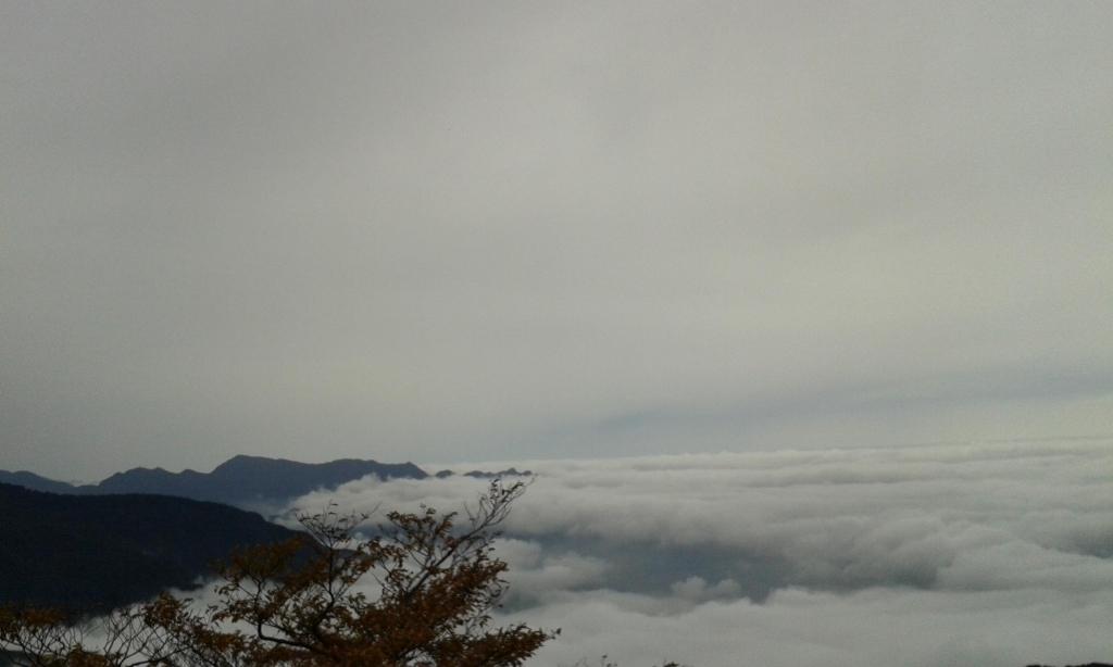 北插之美-霧淞、山毛櫸變色、雲海_47163