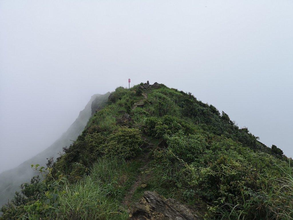 瓏美麗一週一步道(半屏山,無耳茶壺山)_585886