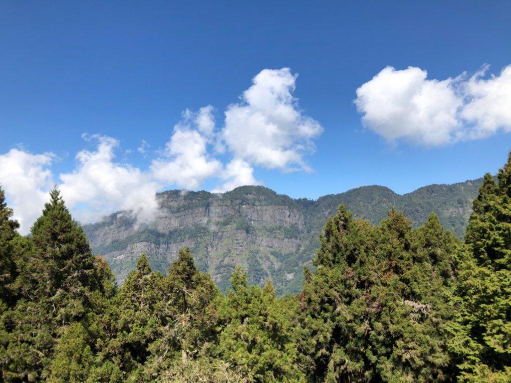 阿里山水山巨木、祝山觀日步道、對高岳步 _727024