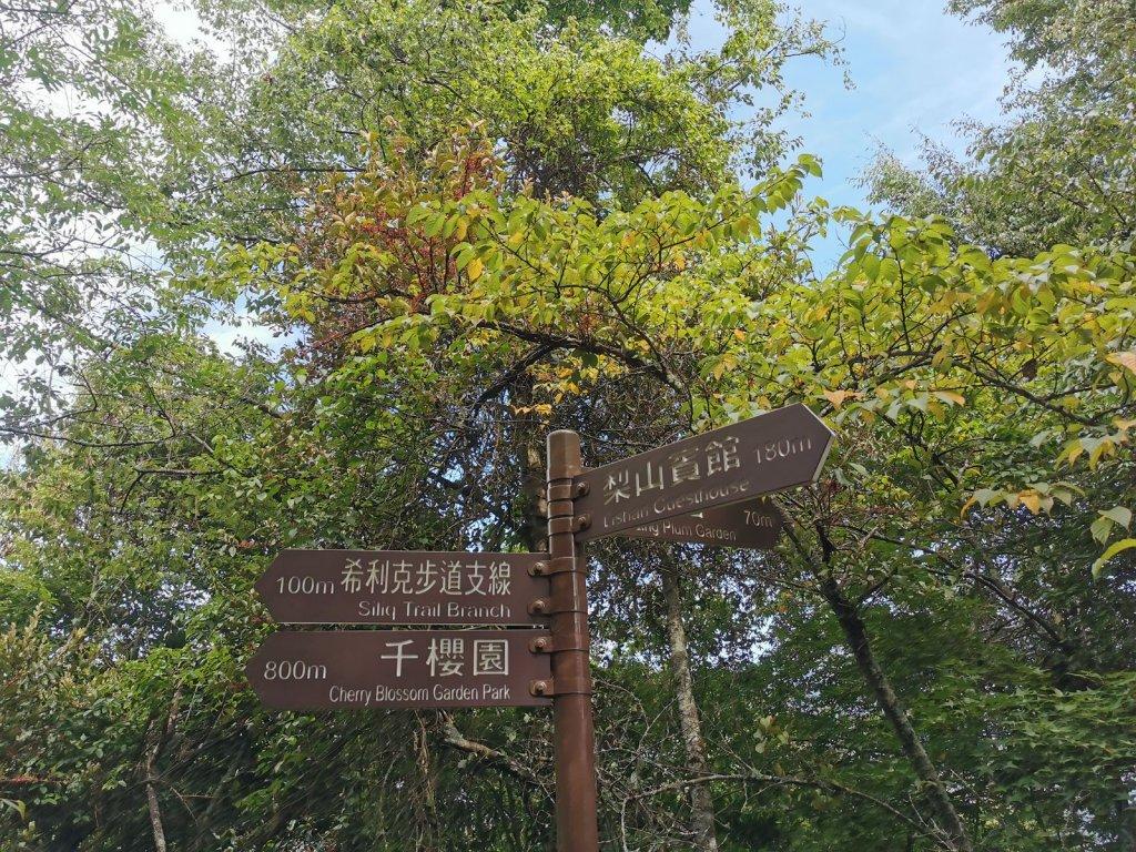 梨山賓館生態環保步道-陡階梯及特色瓦片道_1049436
