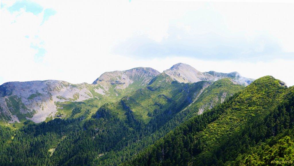 流浪山林的故事~雪山聖稜線_644213
