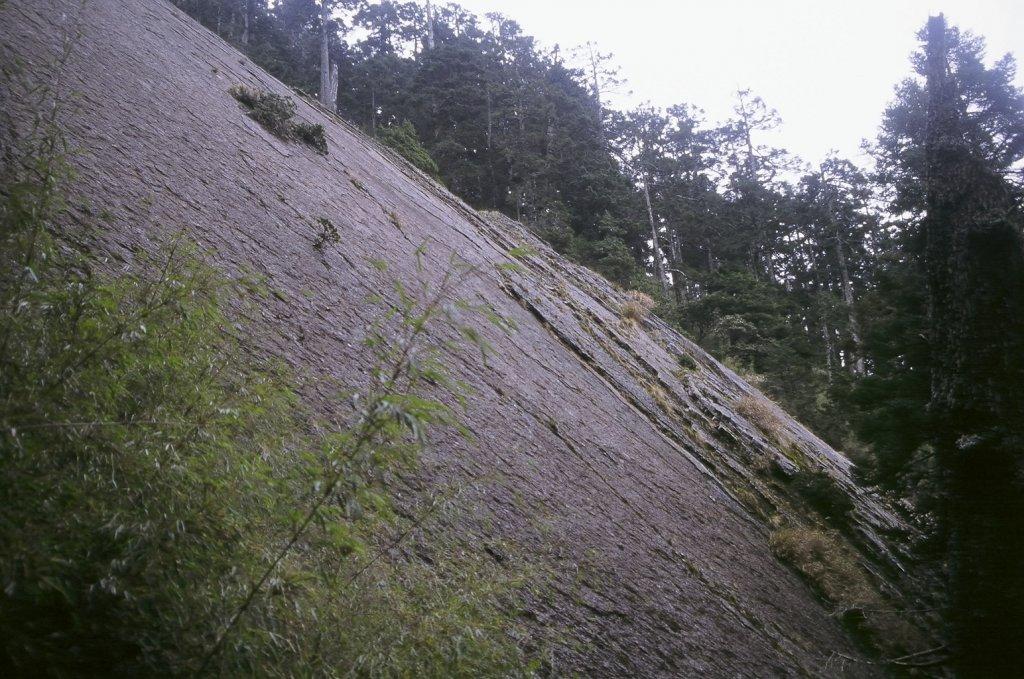 第一次的高山旅行 玉山八通關  2005_623385