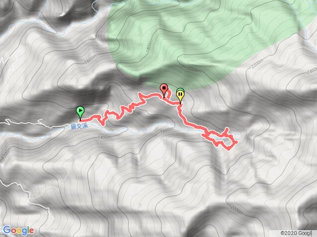 拉拉喀斯巨木群
