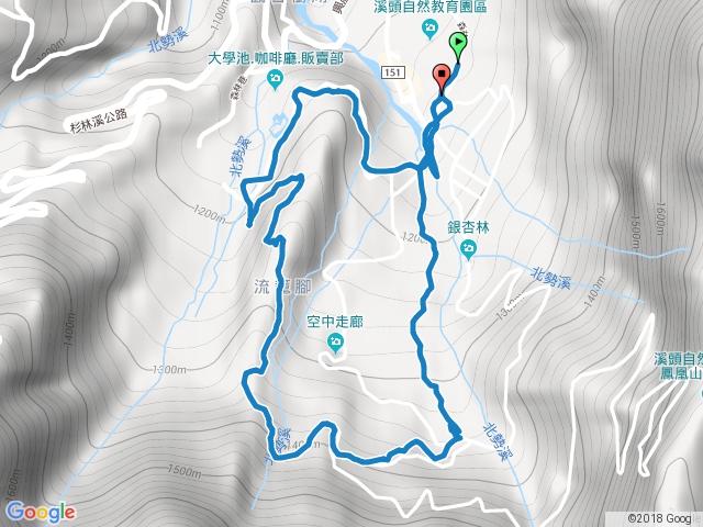 溪頭森林浴步道+神木步道