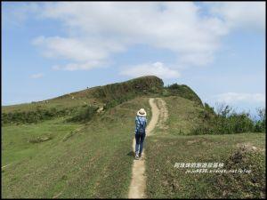 新北。桃源谷步道內寮線浪漫大草原