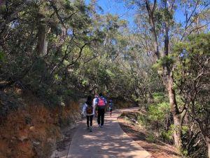 澳洲藍山國家公園~三姐妹岩