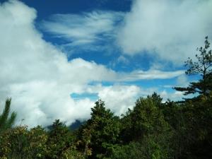 雪霸國家公園觀霧遊憩區