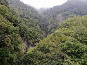 最美的天空步道 〜 錐麓古道
