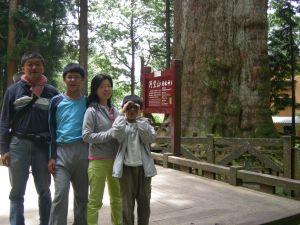 20100706 阿里山神木步道