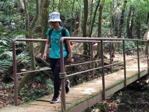 林口頂福巖森林步道