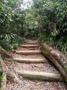 福州山公園