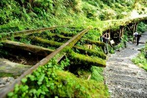 【宜蘭】一個小小小心願:見晴步道+望洋山步道