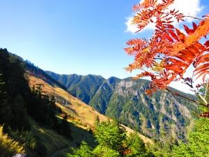 山岳之美~雪山主東下翠池