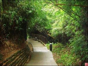 【新北市】楓櫃斗湖步道