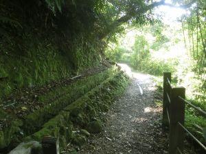 絹絲瀑布.擎天崗.竹篙山