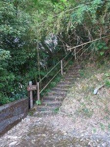 台灣小百岳第61座-嘉義番路鄉-大湖尖山