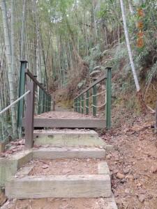 後尖山步道登後尖山