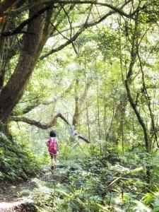 跟著陳綺貞去旅行--雲森瀑布