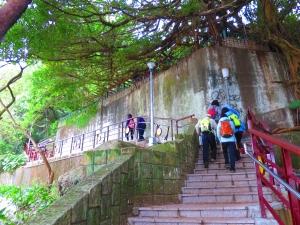 劍南山步道、劍南蝶園