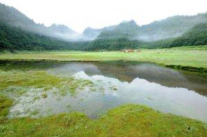 【宜蘭】來去松蘿湖度假吧+晨探南勢溪源頭