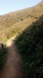 聖母登山步道O型走